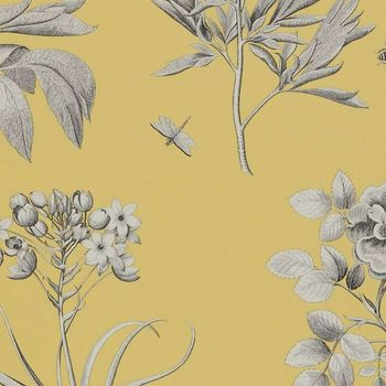 Обои Sanderson | Коллекция Parchment Flowers Wallpapers Etchings and Roses