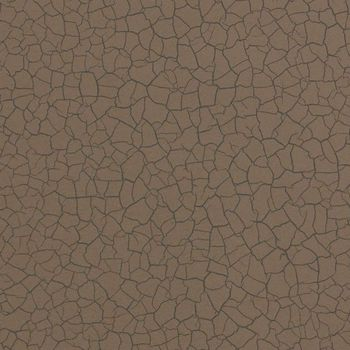 Обои Zoffany | Коллекция Akaishi Wallcoverings Cracked Earth