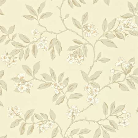 Обои Sanderson | Коллекция Maycott Wallpapers Blossom Bough