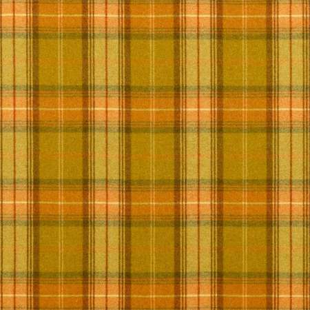 Ткани Sanderson | Коллекция Highlands Woodford Plaid