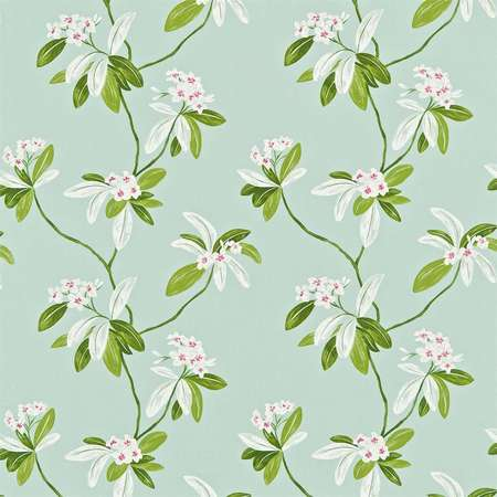 Ткани Sanderson | Коллекция Richmond Hill Fabrics Oleander